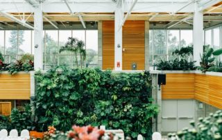 what is biophilic design & why does it matter?